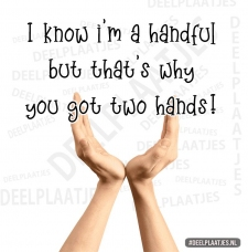 i know im a handful