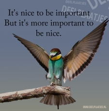 more important to be nice